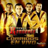 Corridos (En Vivo) by Grupo Renuente