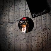 Trampolin by Matt John