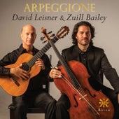 Arpeggione by Zuill Bailey