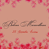Boleros Maravillosos - 25 Grandes Éxitos by Various Artists