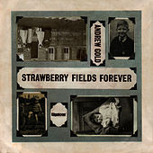 Strawberry Fields Forever by Andrew Gold