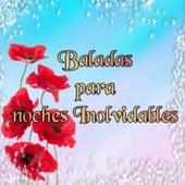 Baladas Para Noches Inolvidables by Various Artists