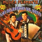 20 Exitos Musica Flamante by Los Relampagos Del Norte
