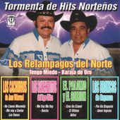 Tormenta De Hits Nortenos by Various Artists
