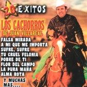 20 Exitos by Los Cachorros de Juan Villarreal