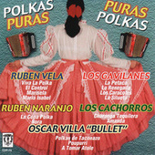 Polkas Puras, Puras Polkas by Various Artists