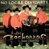 No Logre Olvidarte by Los Cachorros de Juan Villarreal