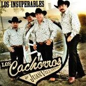 Los Insuperables by Los Cachorros de Juan Villarreal