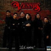 El Camino by Grupo Vennus