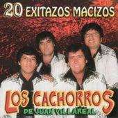 20 Exitazos Macizos by Los Cachorros de Juan Villarreal