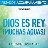 Dios es Rey (Muchas aguas) by Christine D'Clario