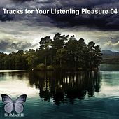 Tracks for Your Listening Pleasure 04 by Various Artists