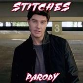 Stitches Parody by Bart Baker