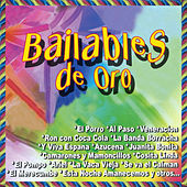 Bailables de Oro by Various Artists