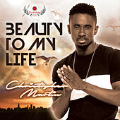 Beauty To My Life by Christopher Martin