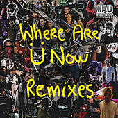 Where Are Ü Now Remix by David West