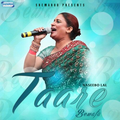 Bewafa Hai Tu Song Download: Nain Tere Beiman Sohniya, Vol. 80 (Mujra Hi Mujra) By