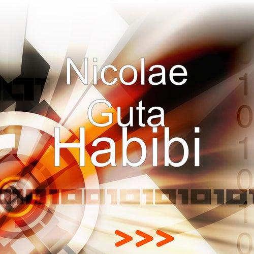 Habibi by Nicolae Guta