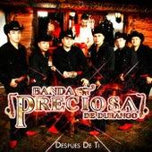 Despues de Ti by Banda Preciosa De Durango