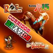 Corridos Bravios by Various Artists