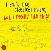 I don't like classical music, but I really like this! by Various Artists