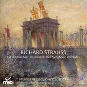 Strauss: Ein Heldenleben / Intermezzo: Four Symphonic Interludes by Melbourne Symphony Orchestra
