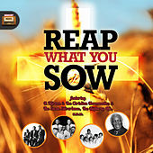 Reap What You Sow von Various Artists