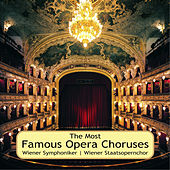 The Most Famous Opera Choruses by Various Artists