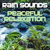 Rain Sounds (Peaceful Relaxation) by White Noise