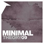 Minimal Theory, Vol. 9 by Various Artists