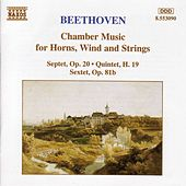 Chamber Music for Horns, Wind and Strings by Ludwig van Beethoven