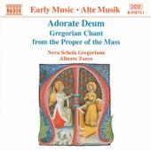 Adorate Deum / Gregorian Chant from the Proper of the Mass by Nova Schola Gregoriana