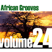 African Grooves Vol.24 by Various Artists