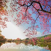 Wellness & Spa Sounds by White Noise