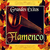 Grandes Éxitos Flamenco by Various Artists