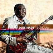 Djely Blues by Djelimady Tounkara