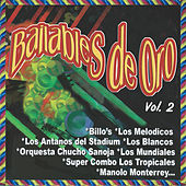 Bailables de Oro, Vol. 2 by Various Artists