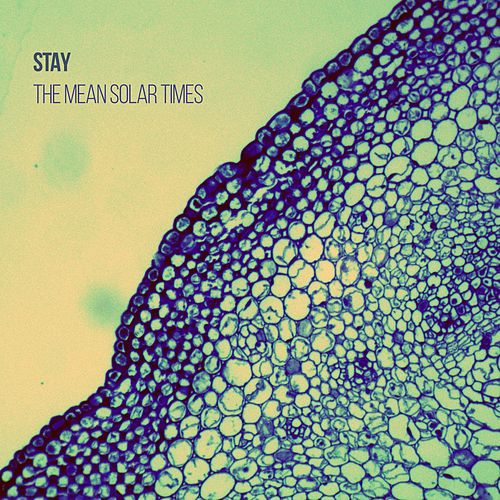 The Mean Solar Times by Stay