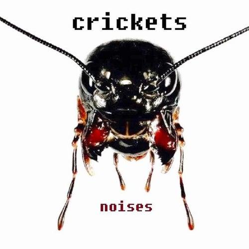 Noises by Bobby Vee