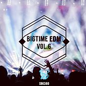 Bigtime EDM, Vol. 6 by Various Artists