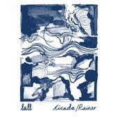 Cicada / Rainer by Lull