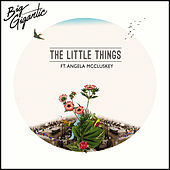 The Little Things (feat. Angela McCluskey) by Big Gigantic