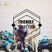 Friendly Selection, Vol. 7 by Various Artists