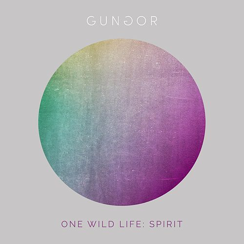 One Wild Life: Spirit by Gungor