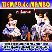 Tiempo de Mambo by Various Artists