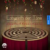 Labyrinth der Töne, Vol. 14 - Deep & Tech-House Music by Various Artists