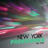 New York Phenomena, Vol. 2 by Various Artists