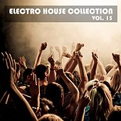 Electro House Collection, Vol. 15 by Various Artists