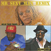 Mr. Sexy Man (Remix) [feat. Nelson Curry & Joe Nice] by Nellie Tiger Travis