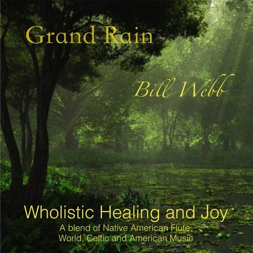 Grand Rain by Bill Webb